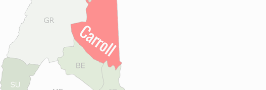 Carroll County Map